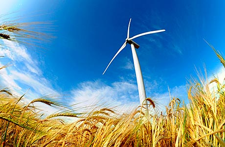Growth high for clean energy