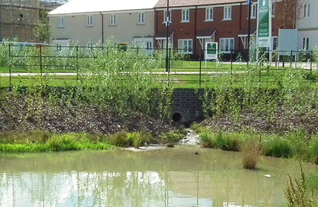 The latest revisions threaten hopes that the industry might adhere to the kind of best-practice guidelines for SuDS implementation showcased by the likes of Grainger's homes development in Berewood last year.