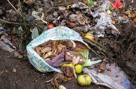 The abrasive action of acidic food waste can cause AD plant headaches.