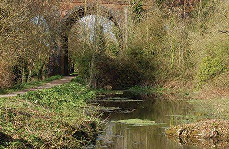 A view along the Loddon River through Old Basing, Basingstoke.