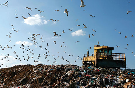 SITA fined for landfill permit breach