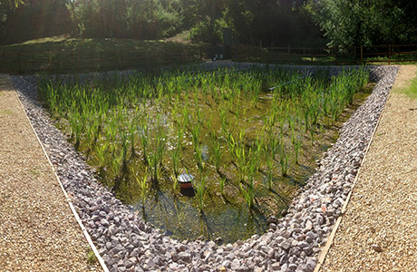 Aerated reed bed meets tight targets