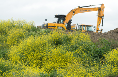 "Veolia and the RSPB celebrate ""landfill facelift"" and biodiversity work in Essex"