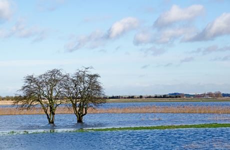 Commons Select Committee calls for action to address flood prevention failings