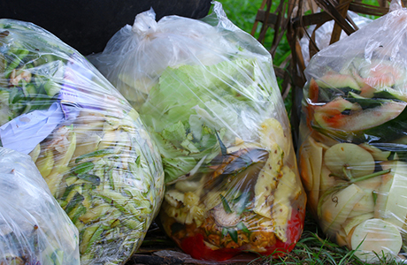 Industry response to The Food Waste Recycling Action Plan