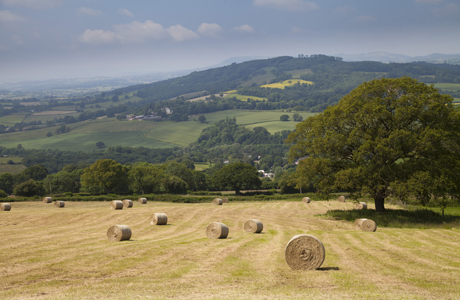 National landowner calls for public money to be used for public good