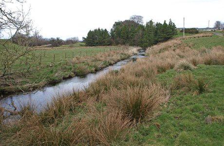 Slurry spill results in £8,000 fine for farmer in Scotland