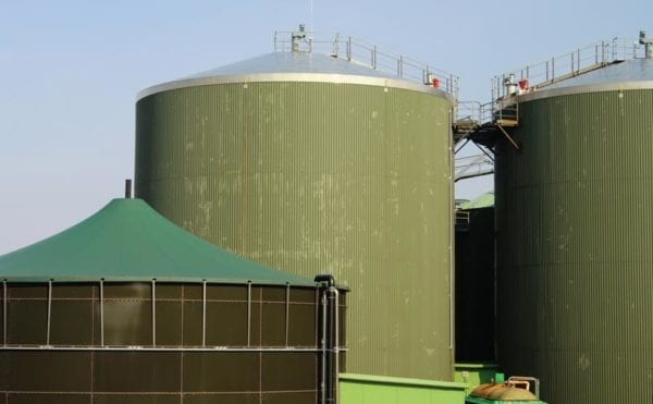 New conference to examine role of anaerobic digestion in Northern Irish economy