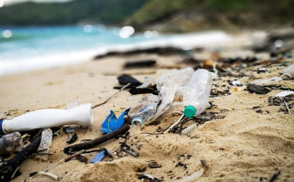 Government has cut marine plastic pollution by 2 per cent, but it could stop two thirds, says sustainability group