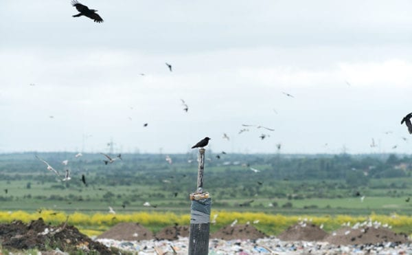 The life left in landfill: Veolia describes its recent stewardship of sites