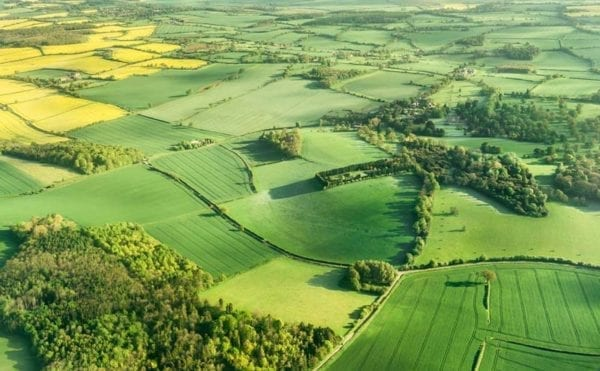 Satellite maps variability of UK countryside