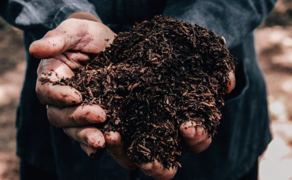 More than half of microplastics remain on land, says CIWEM report