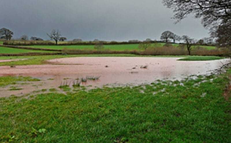 EA publishes data, case studies and evidence about the role of natural flood management in reducing flood risk.
