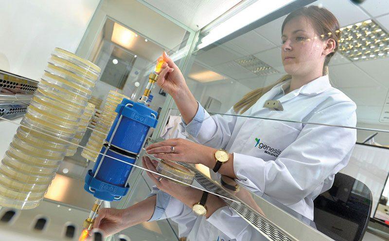 Scientist at Genesis Bioscience