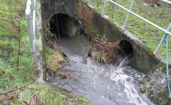 """EA water quality report """"woefully short on action"""" to control runoff pollution"""