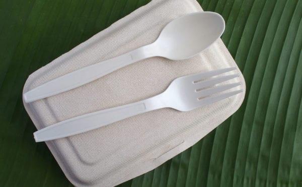 Bioplastics are key to solving plastic waste, says report