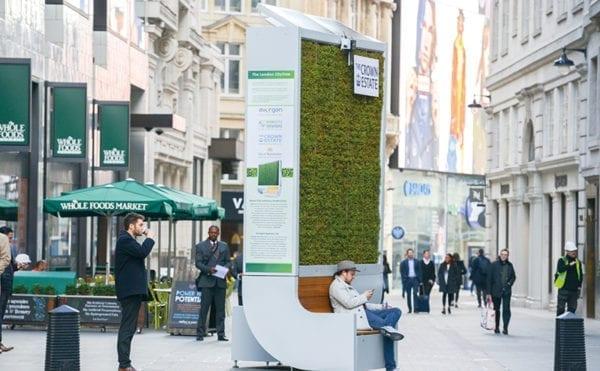 UK cities get behind moss tree trials