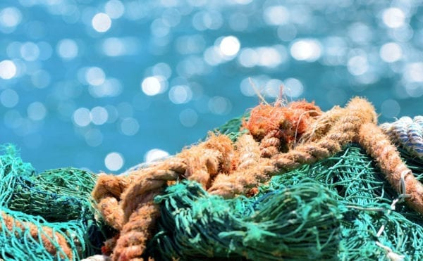 UK Government announces £200k to fund research into microplastics pollution pathways