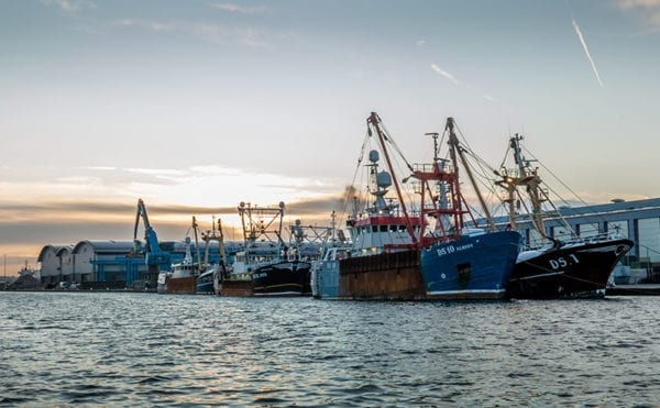 Government's post-Brexit fisheries proposals are vague on how they will achieve world leading sustainable fisheries say conservationists