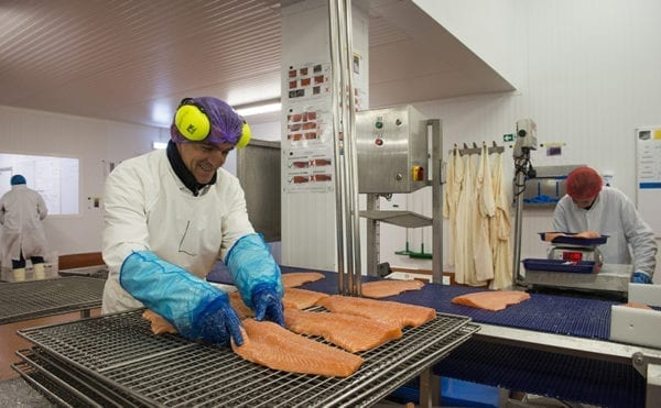 Compressor cuts energy consumption by 76% and service costs by 30% for Scottish seafood processor, says supplier