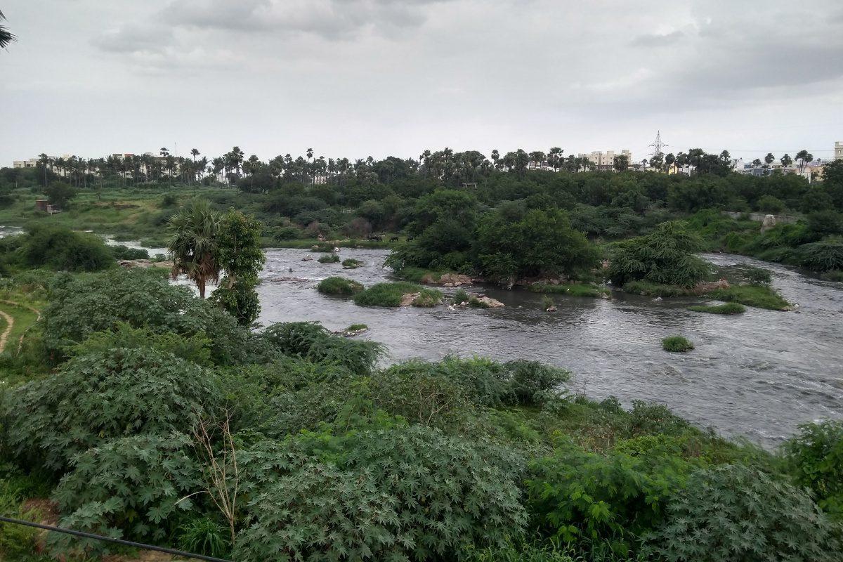 Musi-river