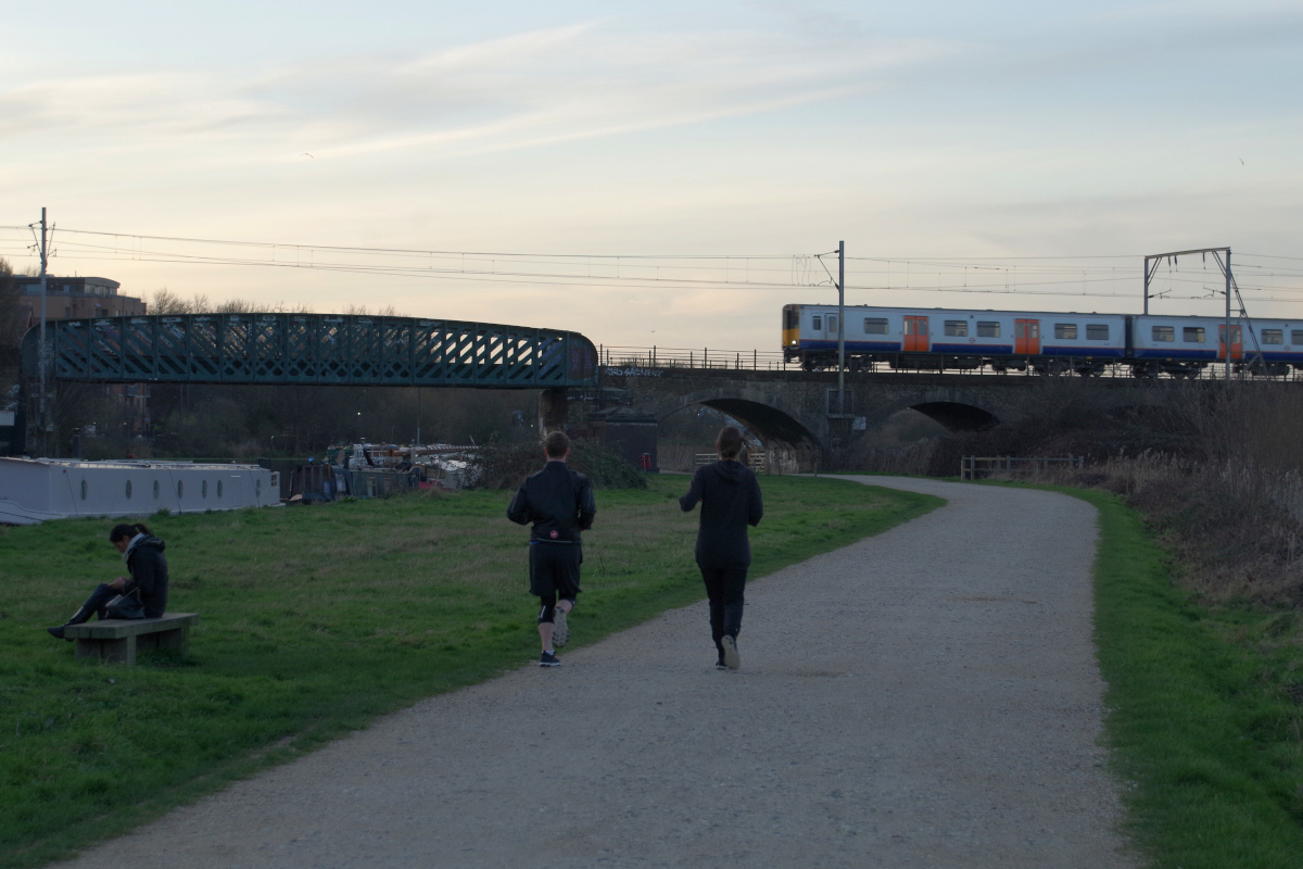 Walthamstow-Marshes-at-sunset