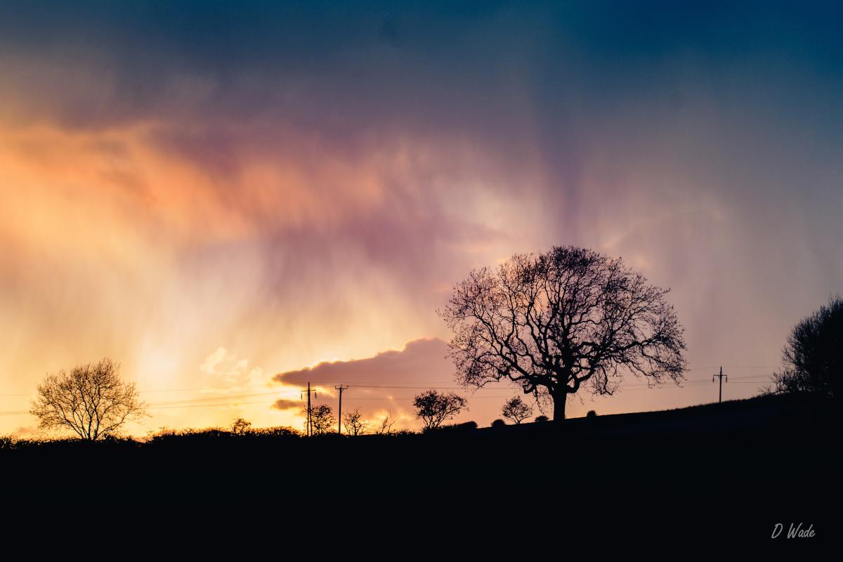 Dimming-daylight
